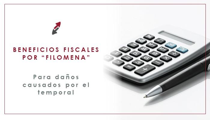 Beneficios fiscales por Filomena para paliar los daños causados por el temporal