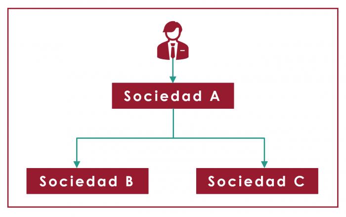 esquema reorganizacion de la empresa familiar